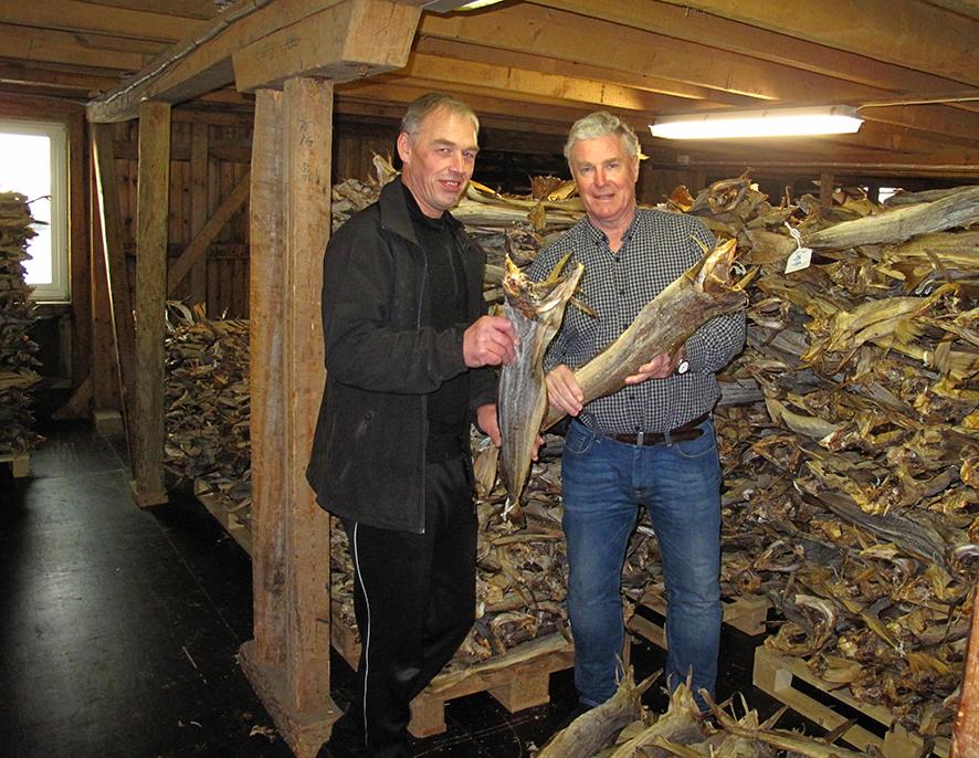 Mange tonn tørrfisk blir vraket (sortert) på Røst. Her er vraker Frode Hansen (t.v.) sammen med president i KNLL, Frank Jensen. Foto: Ann-Lisbeth Jensen.